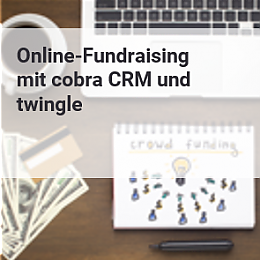 Icon online-Fundraising mit twingle